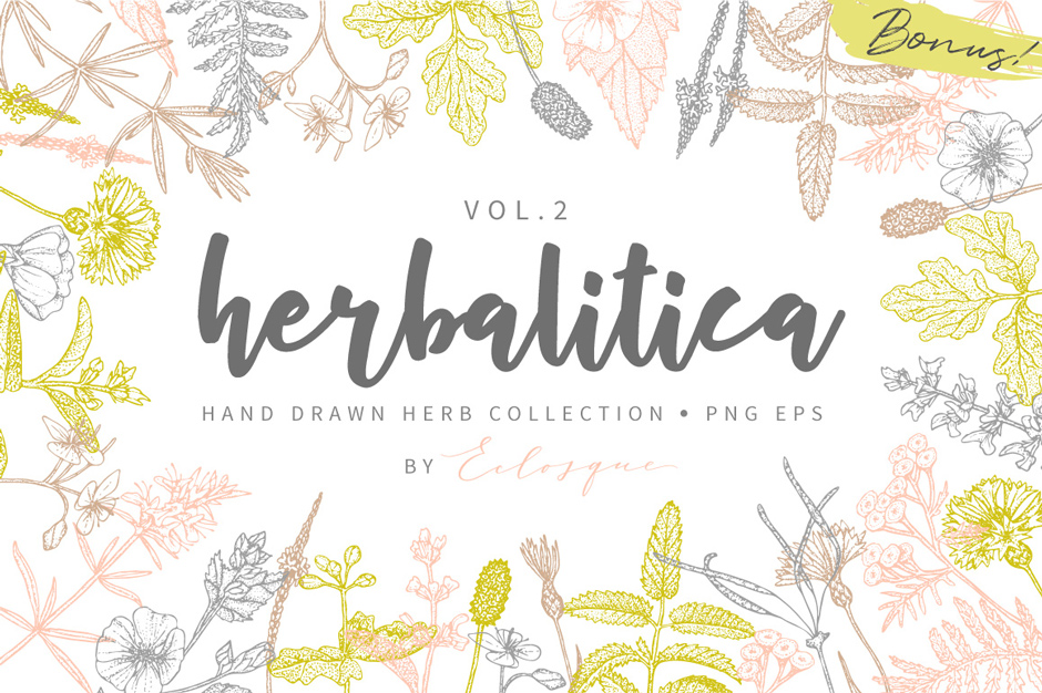 Herbalitica-Flowers-Vol.-2-main