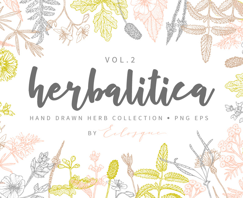 Herbalitica-Flowers-Vol.-2-top