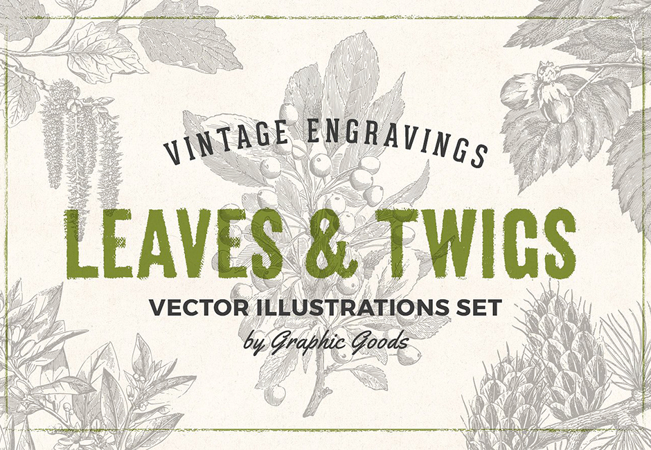 vintage-leaves-and-twigs-main