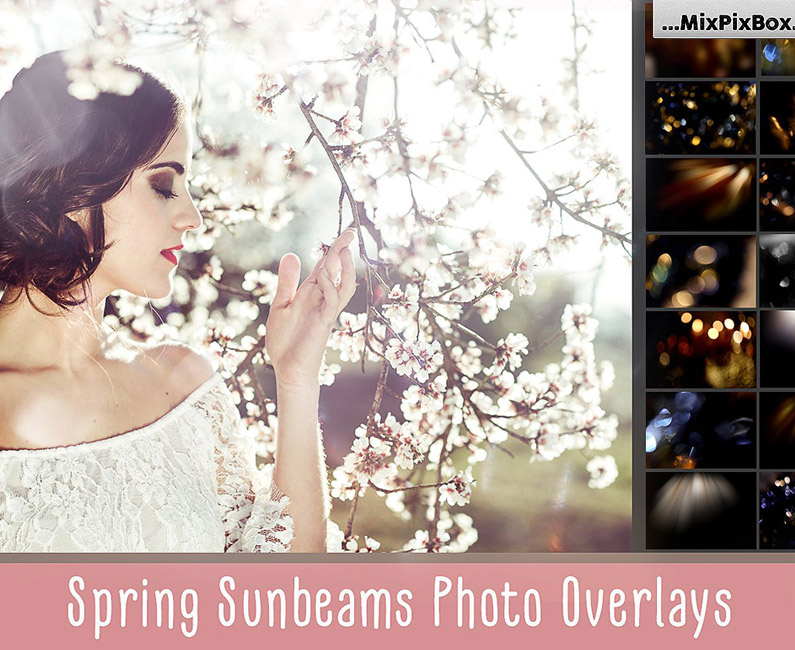 spring-sunbeams-top