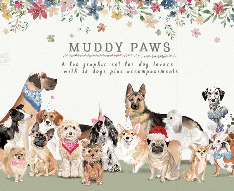 muddy-paws-top-image