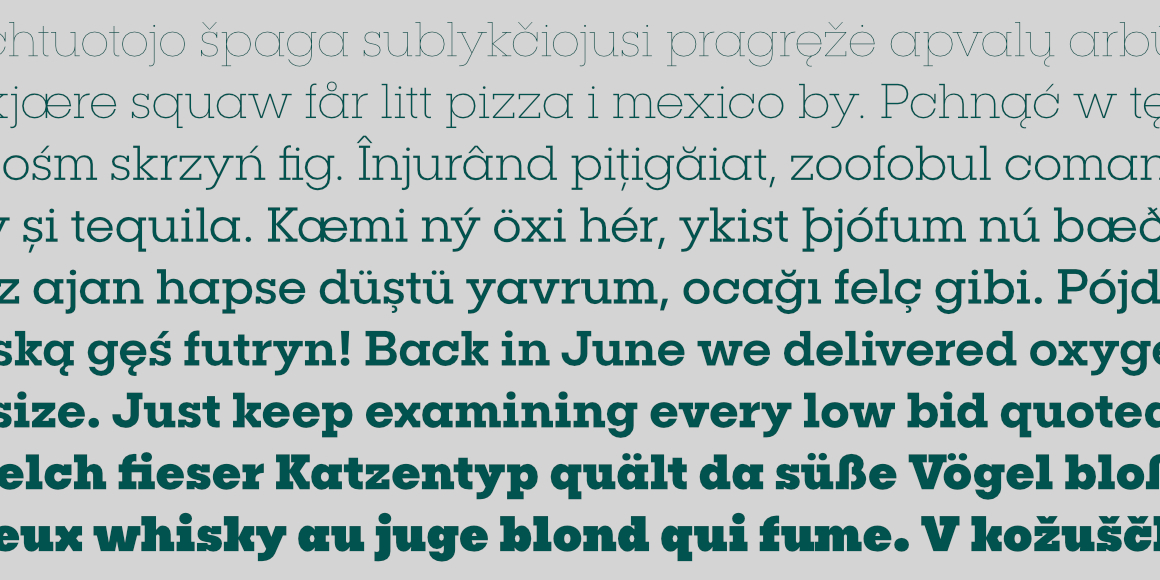 The Professional, Dynamic Font Library - Design Cuts