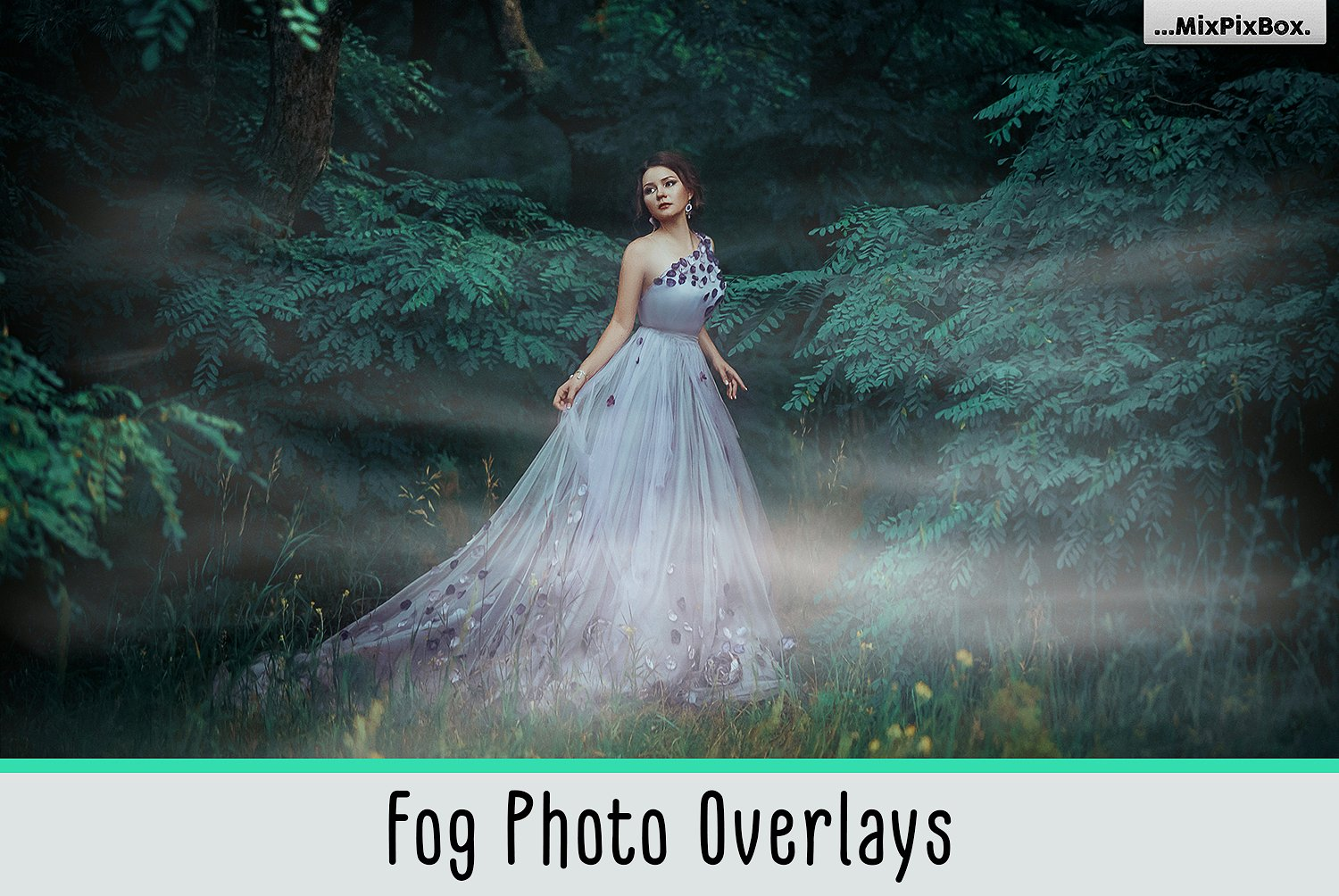 Fog-Overlays-cover