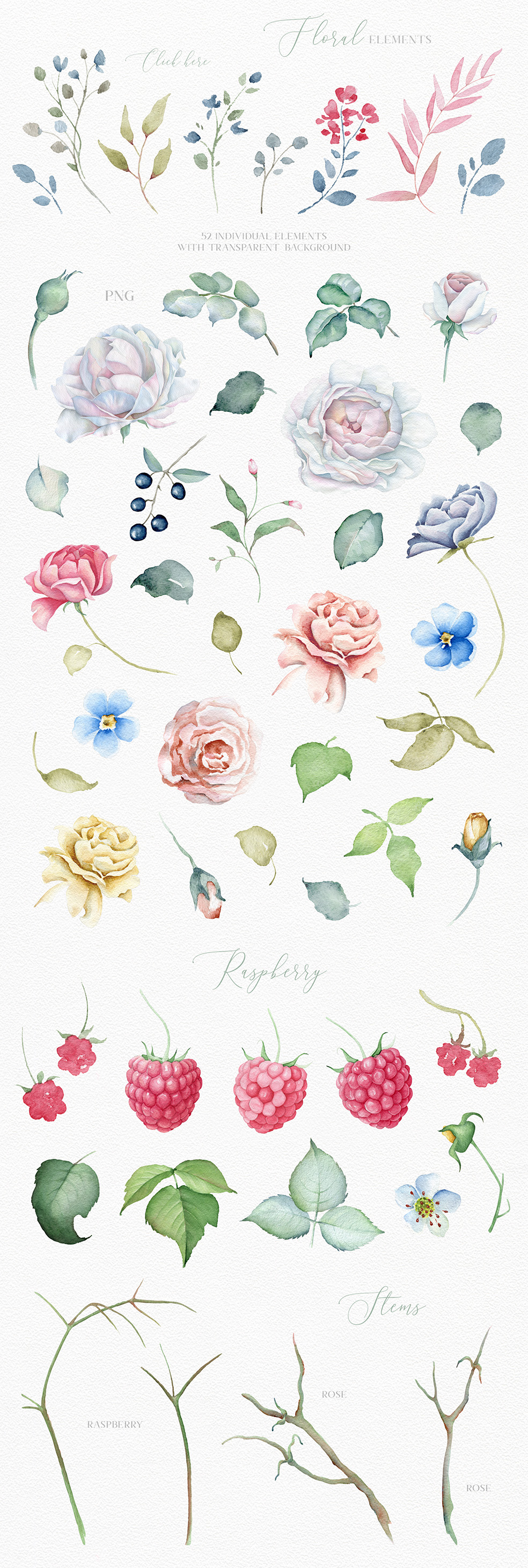 Delicate Watercolor Flowers