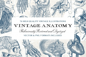 76-Vintage-Anatomy-Illustrations-cover