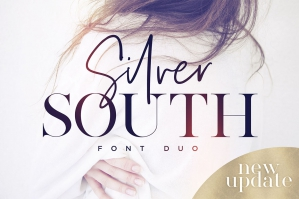 Silver-South-cover
