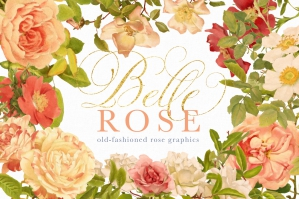 Belle-Rose-Antique-Graphics-Bundle-cover
