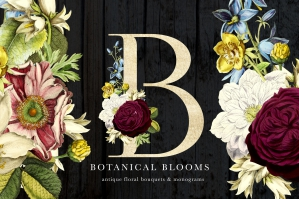 Botanical-Blooms-And-Monograms-cover
