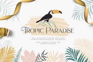 Tropic_paradise-first-image