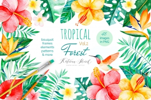 Tropical-Forest-Vol.-2-cover