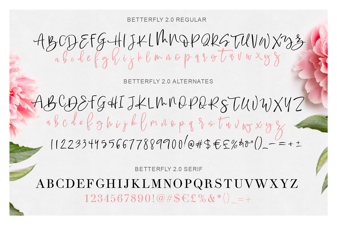BetterFly 2 - Dynamic Font Duo
