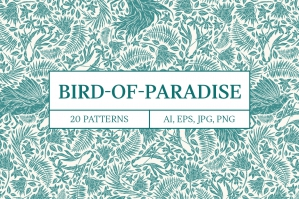 Bird-Of-Paradise-Patterns-cover