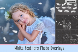 White-Feather-Overlays-cover