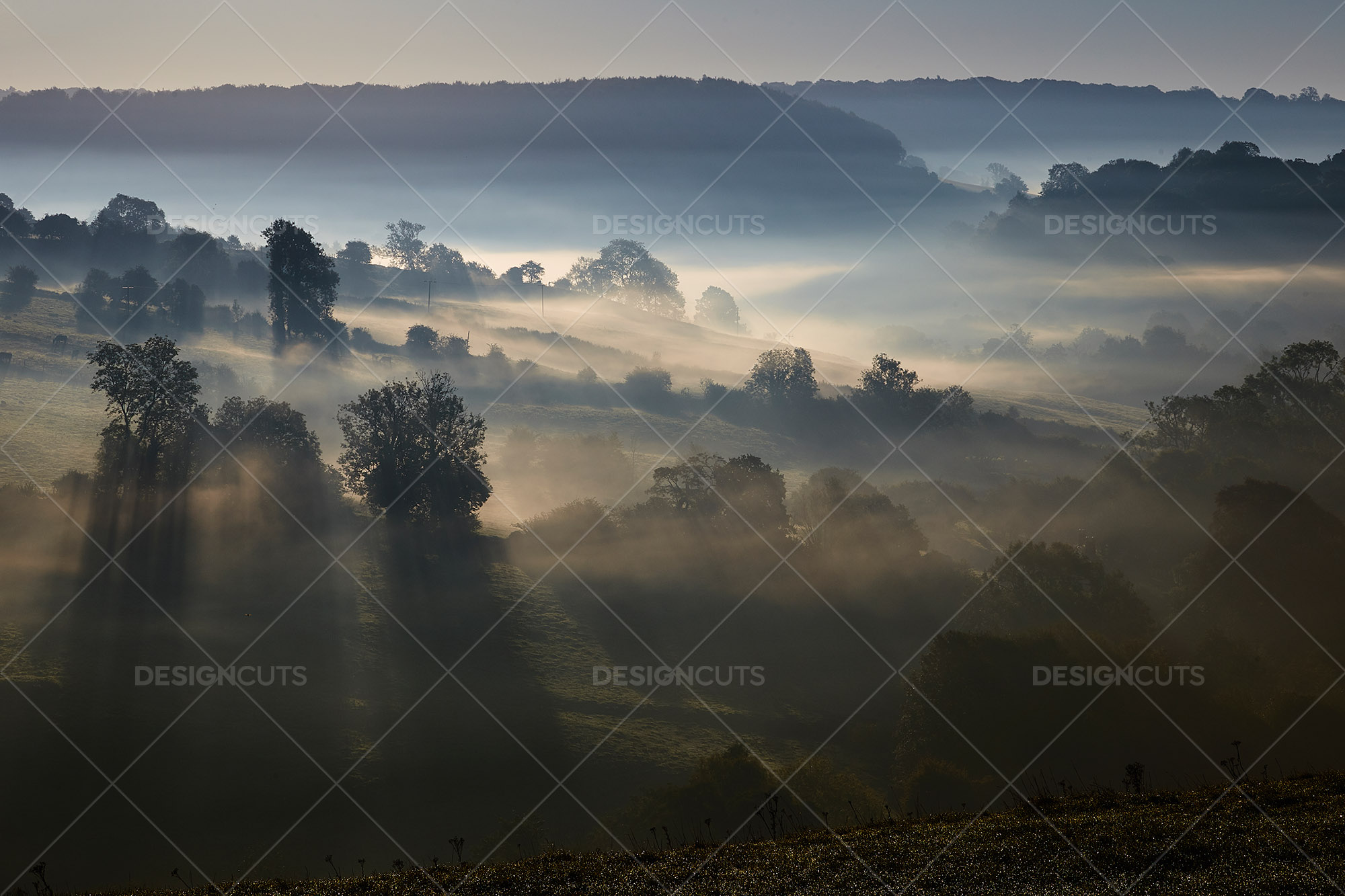 Misty British Country Hillsides At Dawn 12