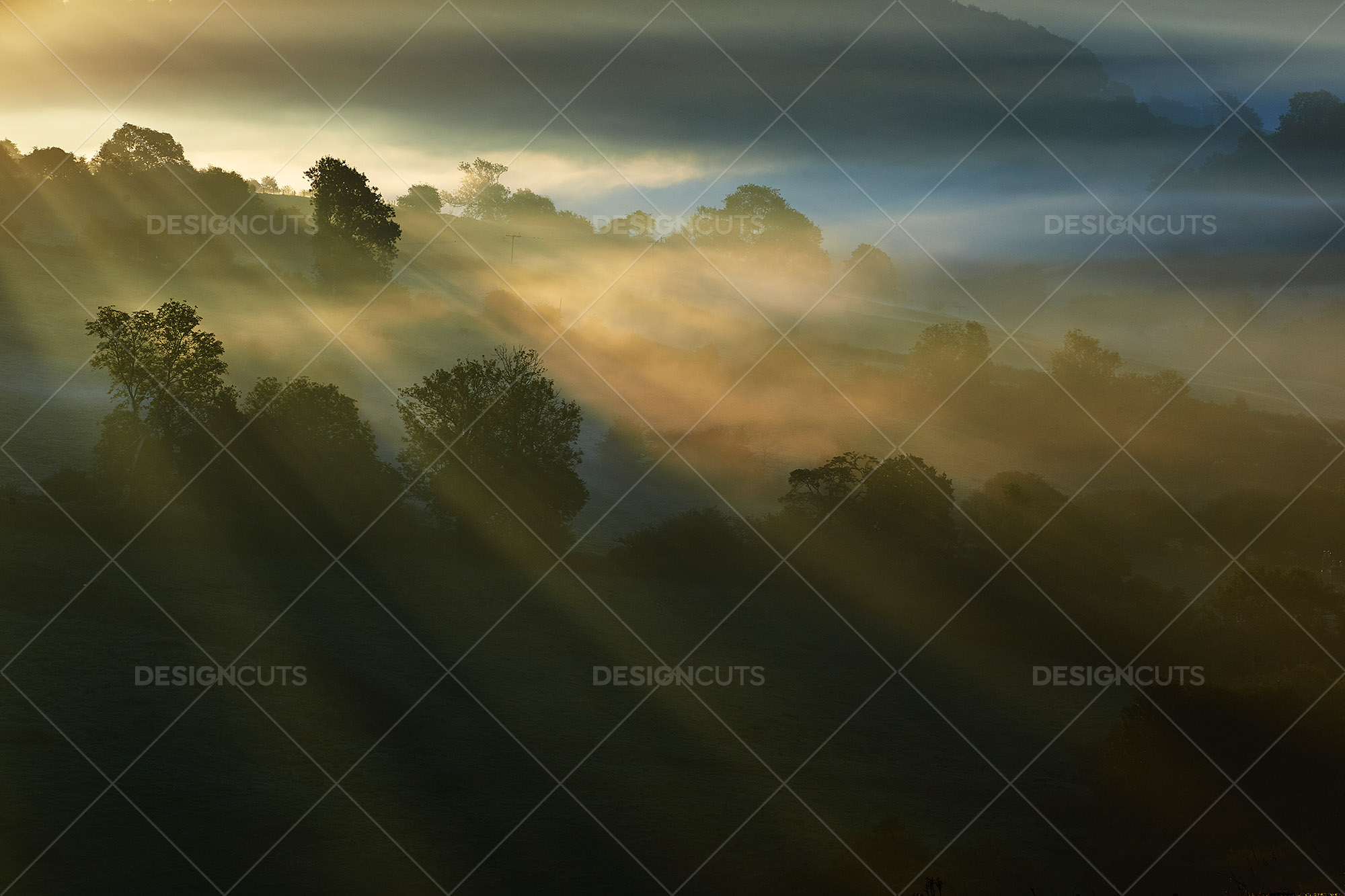 Misty British Country Hillsides At Dawn 4