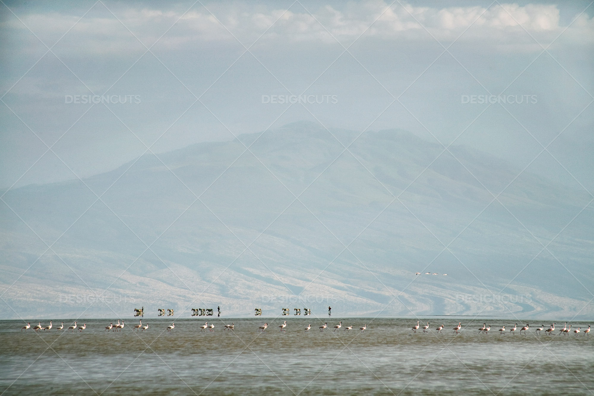 Hazy Landscape View Of Lake Natron