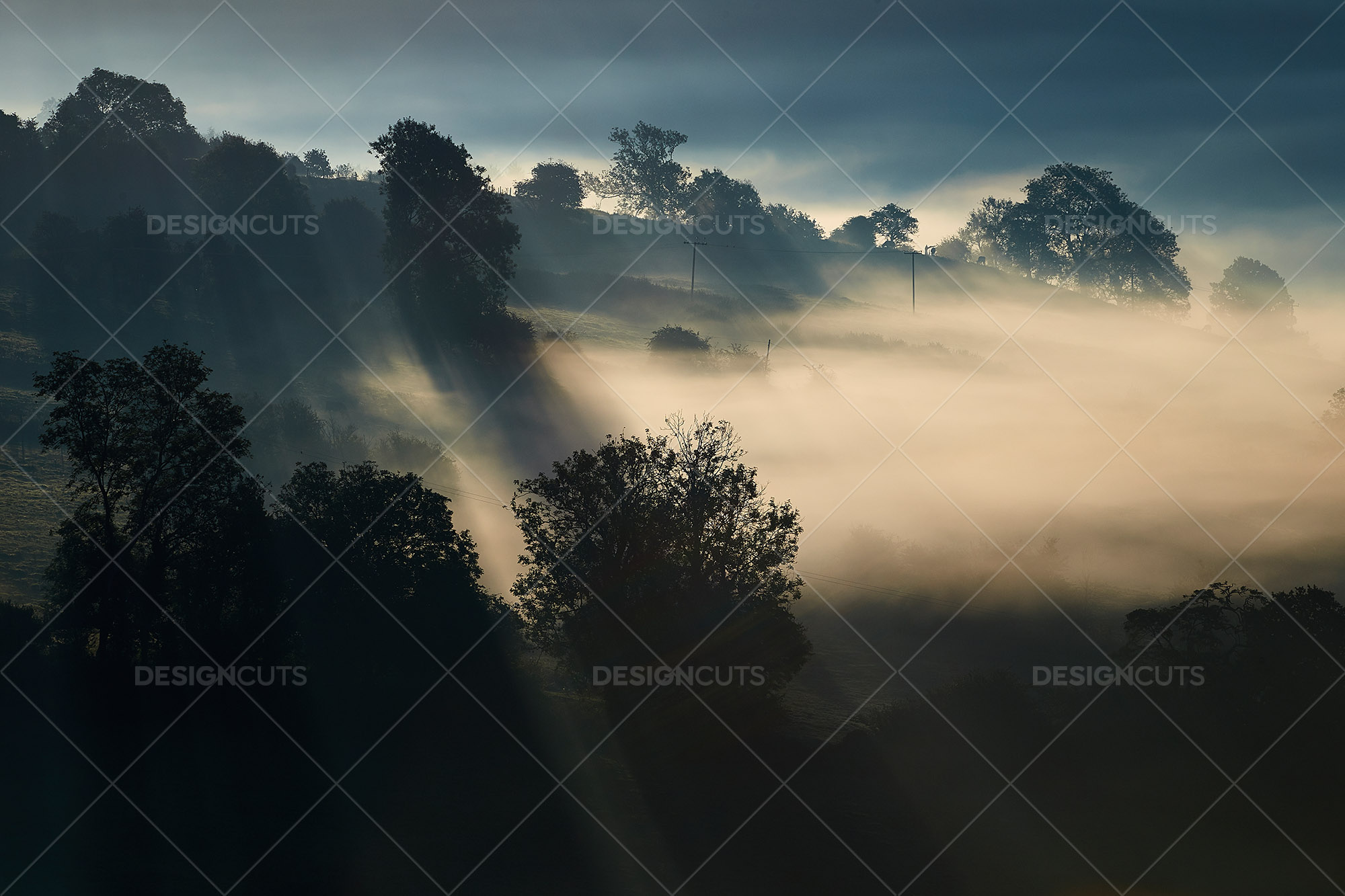 Misty British Country Hillsides At Dawn 21