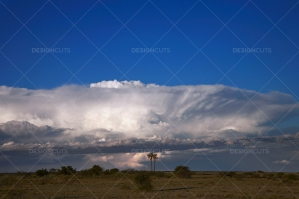Low Clouds Over Botswana Grassy Plain
