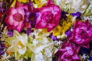 Close Up Of Offerings Of Colorful Flowers