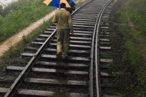 Men Walking With Umbrellas Along Train Tracks In The Rain, Sri Lanka