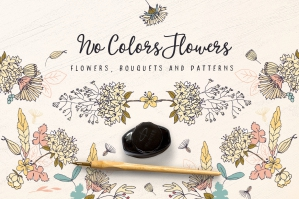 No-Colors-Flowers-cover