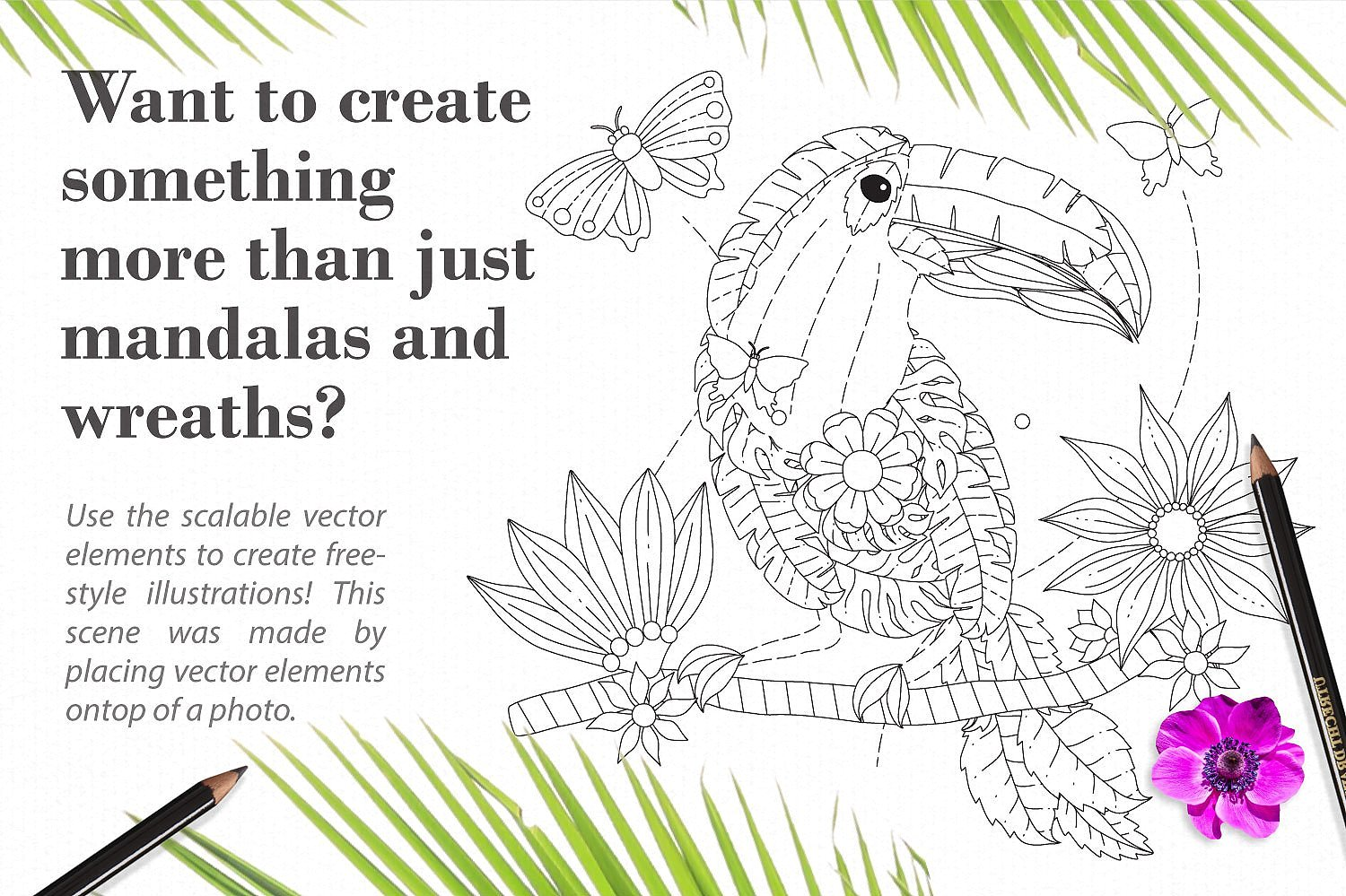 Rainforest Mandala Illustration Creator