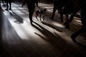 The Shadows Of Commuters On The Floor At Grand Central Station No. 4