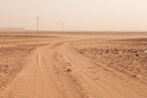 Vehicle Tracks Leading Through The Sahara Desert No. 1
