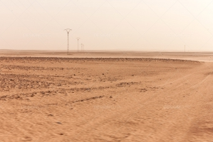 Vehicle Tracks Leading Through The Sahara Desert No. 2
