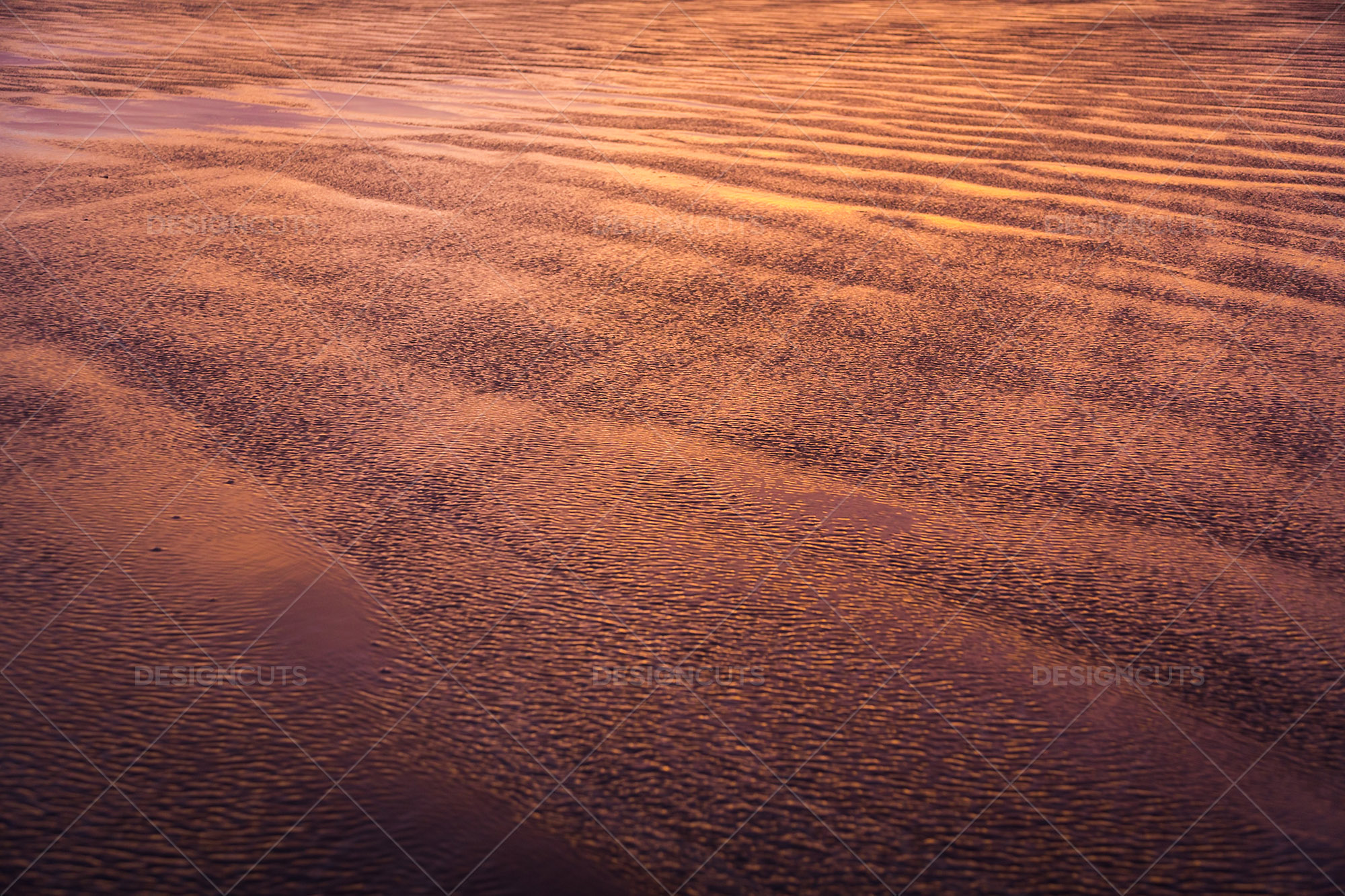 Wind Blowing Surface Water Over The Beach At Saunton Sands, Devon At Sunset 6