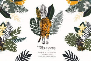Tiger-Moods-cover