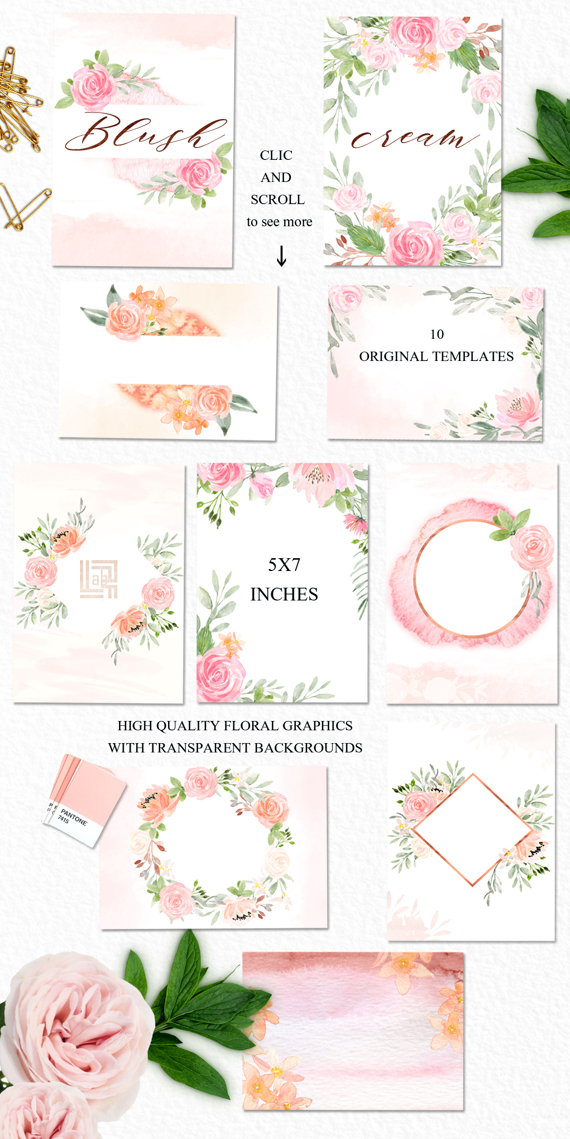 Blush Cream Watercolor Flowers Clipart Design Cuts