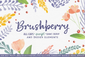Brushberry-cover