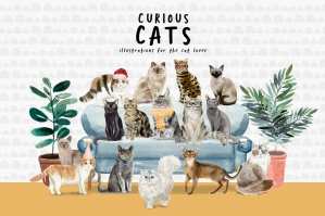 Curious-Cats-Cat-Illustrations-cover