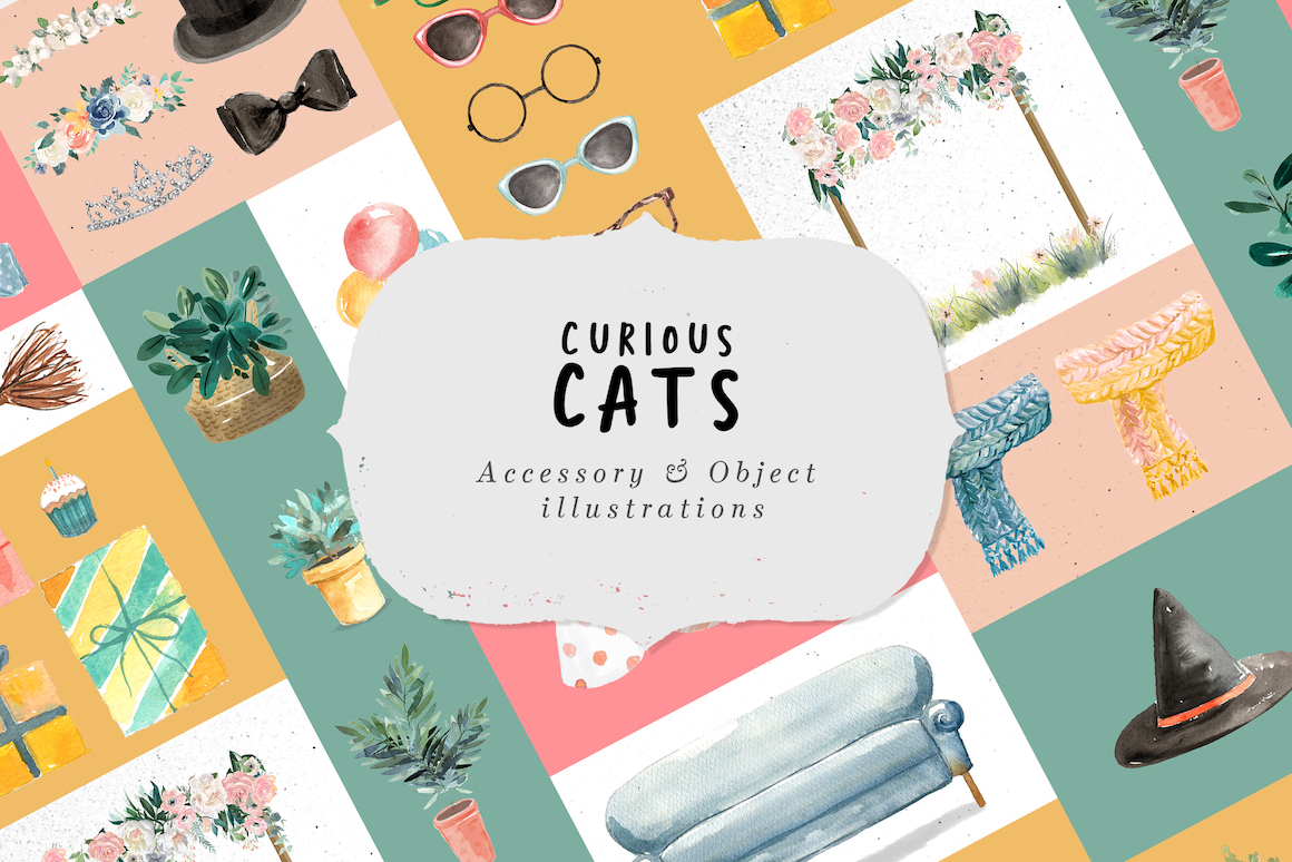 Curious Cats - Cat Illustrations