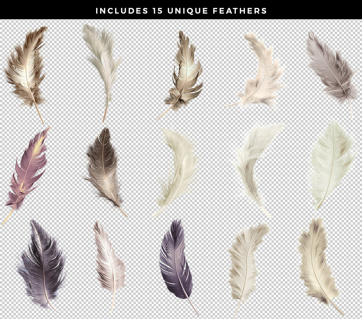 Transparent Feathers Pack