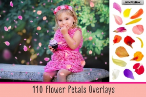 110-Flower-Petals-Overlays-cover
