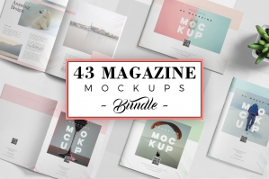 43-Magazine-Mockups-Collection-cover