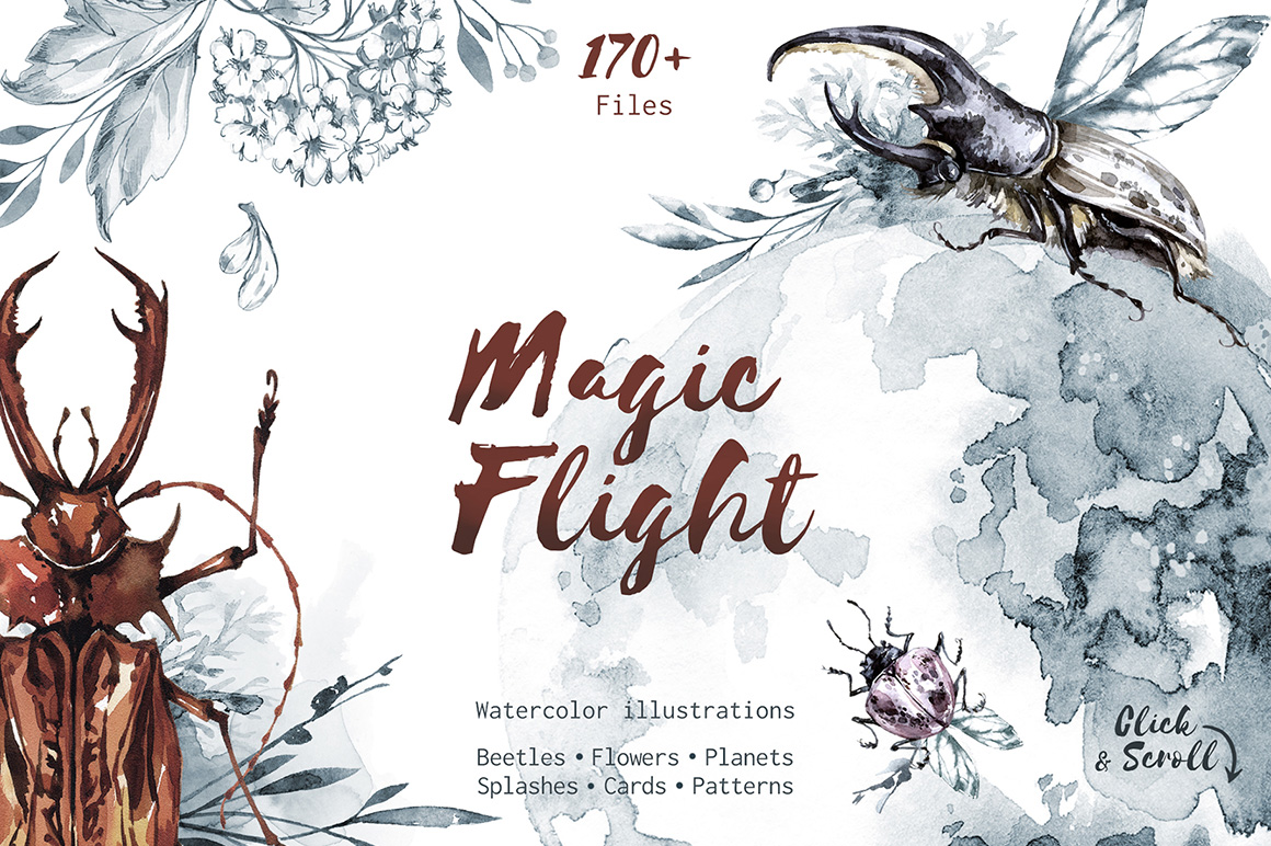 Magic Flight Watercolor Collection