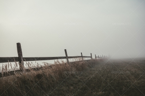 Old Wooden Fence On The Edge Of Field