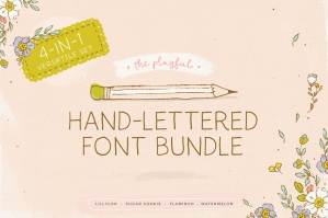 The-Playful-Hand-Lettered-Font-Bundle-cover
