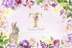 Tinkerbell-Extended-Spring-Edition-cover