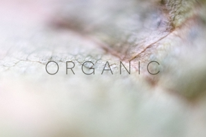 Organic-Photo-Pack-cover