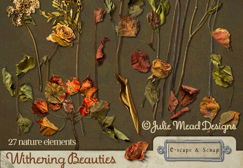 Withering Beauties