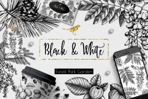 Black & White Trees Collection