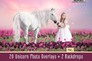 Unicorn Overlays Pack