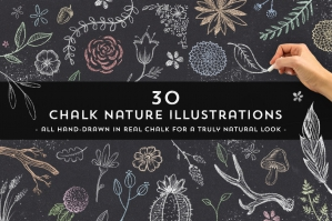 30 Chalk Nature Illustrations