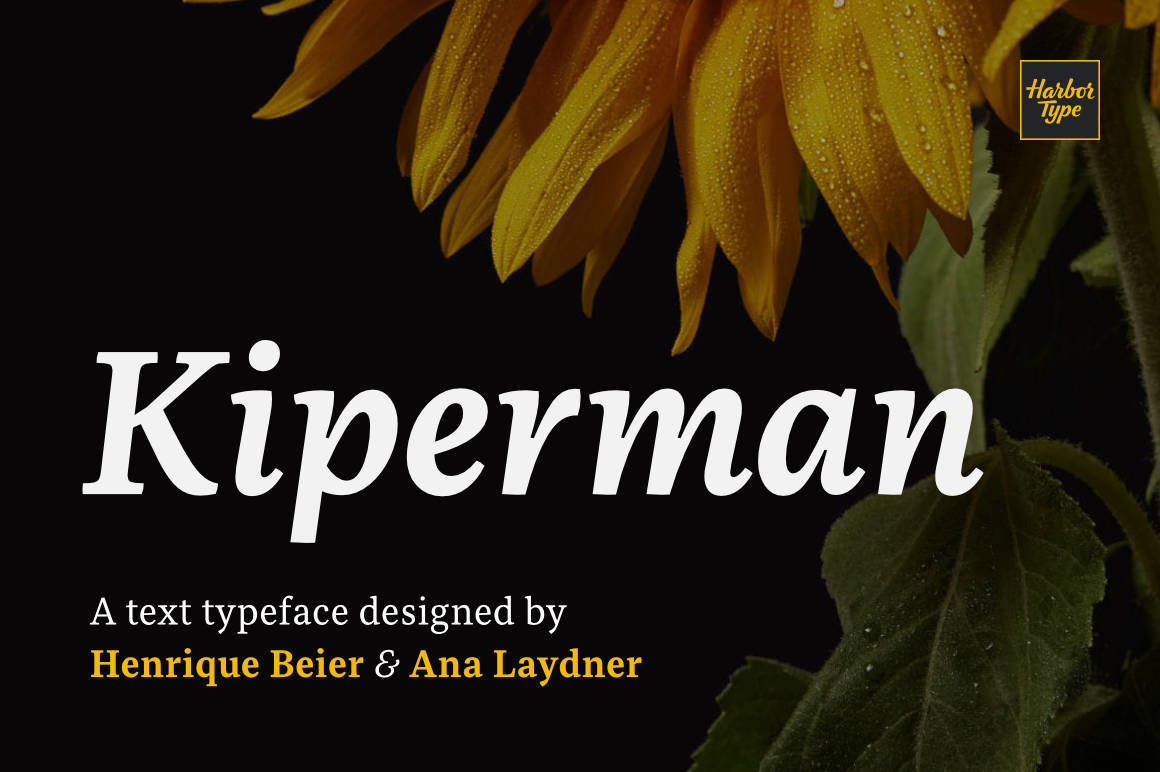 The Definitive Designer's Typography Selection