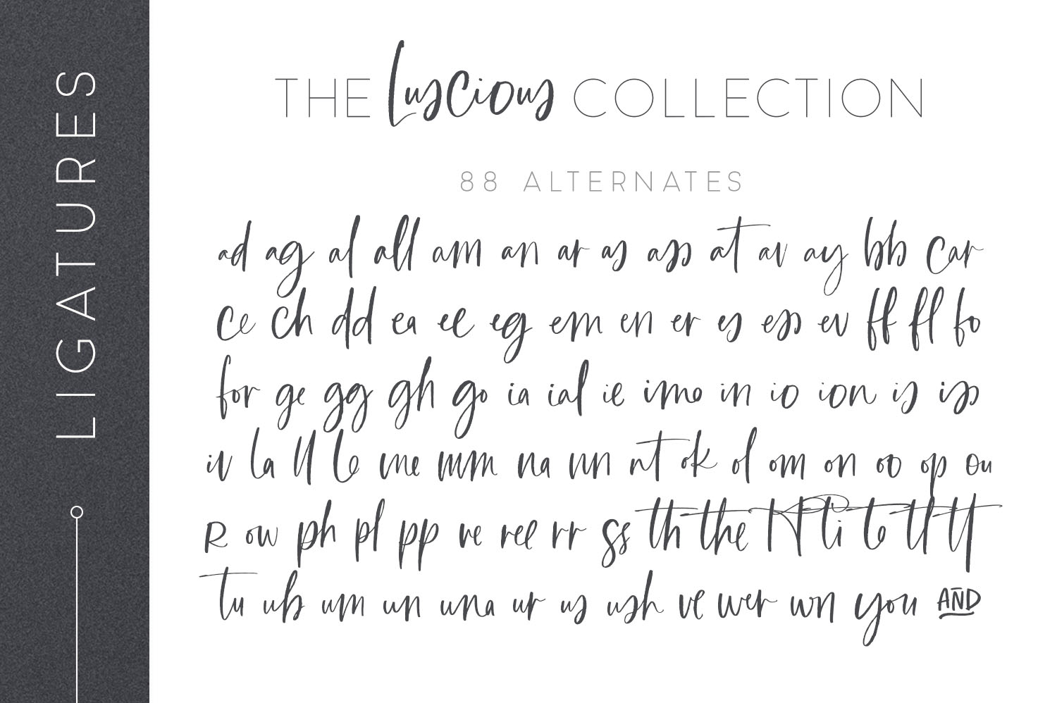 The Font Lover's Complete Versatile Collection