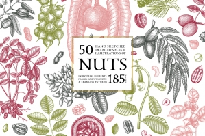 Hand Drawn Nuts - Vector Collection